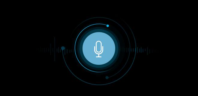 Enter Voice Assistant